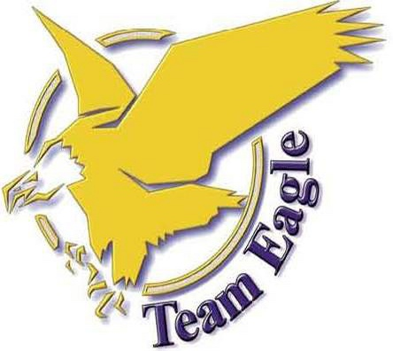 corplogo-eagle-logo-bird-(2)